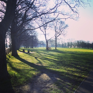 A better shot of the park